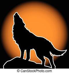 lupo, ululando, in, il, chiaro di luna