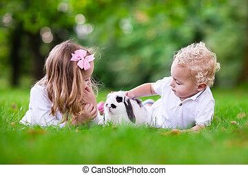 lurar, leka, med, verklig, kanin