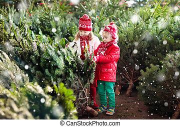 lurar, utse, jul, träd., familj, uppköp, jul, träd.