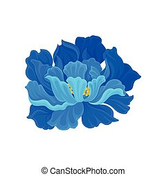 Lush blue flower with a yellow middle. Vector illustration on white background.