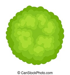 Lush bush. Vector illustration on a white background.