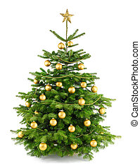 Elegant studio shot of a Christmas tree with gold ornaments, isolated on white