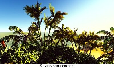 Lush exotic vegetation in tropical jungle - Lush exotic...