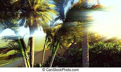 Lush exotic vegetation in tropical jungle - Lush exotic...