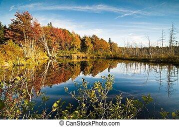 Lush fall foliage and its reflections