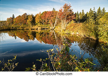 Lush fall foliage reflecting in smooth lake