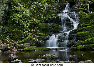 Lush Flowing Falls - A view of Buttermilk Falls in Stokes...