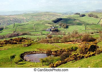 Lush green countryside, English Lake District