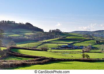 Lush Green English Countryside