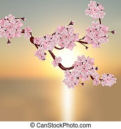 Lush Japanese cherry. A branch of pink cherry blossom. Against the backdrop of a beautiful sunset. illustration