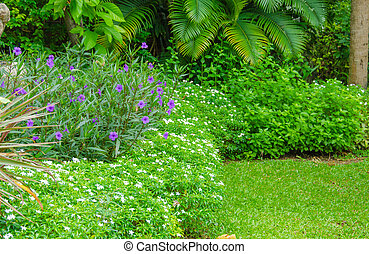 Lush landscaped garden with colorful plants