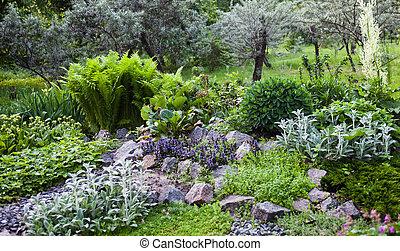 Lush vegetation in the green rock garden.