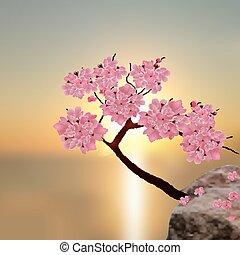 Ciliegia lussureggiante albero coperto ciliegie legno for Sakura albero