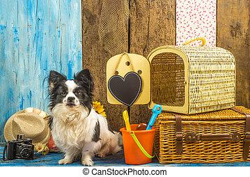 lustiges, hund, mit, sommer feiertag, gepäck