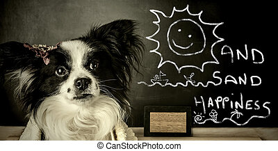 lustiges, hund, sommer urlaub