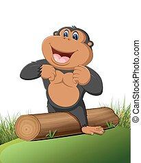 lustiges, karikatur, gorilla