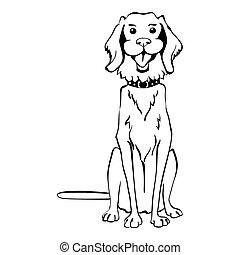 lustiges, skizze, sitzen, goldenes, hund, vektor, apportierhund