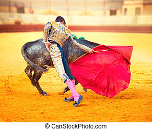 luta, tourada, espanhol, corrida., matador, típico
