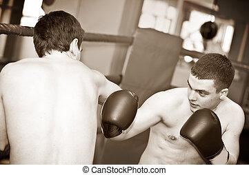 lutas, boxe, -, dois, artistas marciais