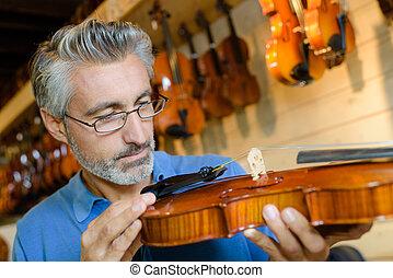luthier, quotazione, cordicella