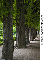 Luxembourg Garden, Paris, France