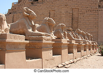 Luxor temple - A photography of an old historic place in ...