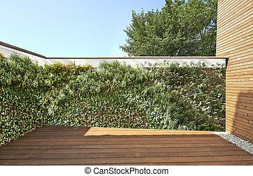luxuriant, légume, mur, et, nouveau, plancher bois dur