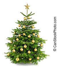 luxuriante, árvore natal, com, ouro, ornamentos