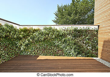 luxuriante, vegetal, parede, e, novo, assoalho hardwood