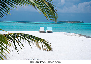 luxurious and beautiful beach setting - palm tree framing sea be