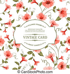 Luxurious color bindweed pattern. - Luxurious vintage card...
