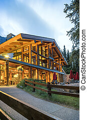 Illuminated luxurious log house in the mountains