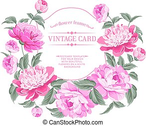 Luxurious vintage frame of color peony label. Vector illustration.