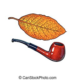 Luxurious wooden tobacco smoking pipe, sketch vector illustration