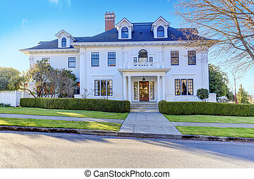 Luxury american house with curb appeal - Luxury american...