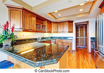 Luxury apartment wood kitchen with granite countertop.