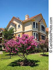 Luxury apartments (condo) - Colorful apartments (condo) ...