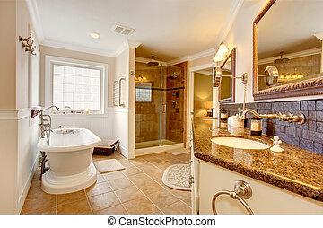 Luxury bathroom interior. Room has glass door shower,...