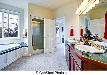 Luxury bathroom with door to master bedroom