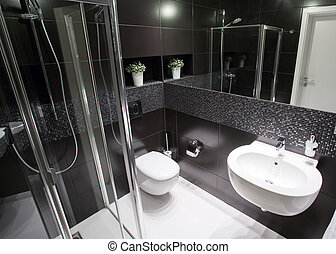Luxury bathroom with shower in modern house