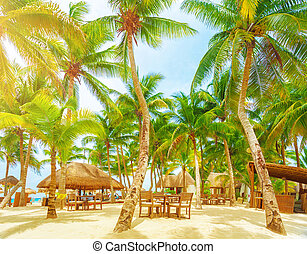 Luxury beach resort, romantic island in Atlantic ocean,...
