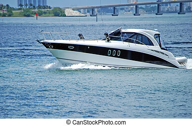 Luxury Cabin Cruiser - Luxury cabin cruiser on the florida...