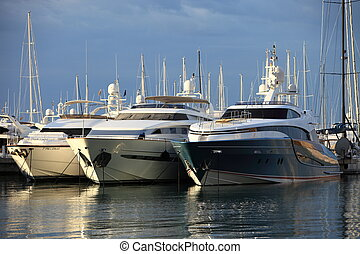 Luxury cabin cruisers moored in a harbour