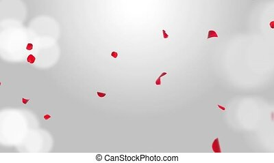 Luxury Fresh Rose petals falling in the air on White ...