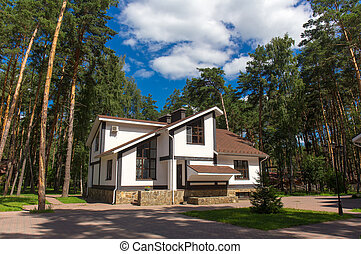Luxury house in the forest