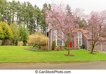 Luxury house with blooming trees