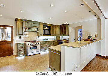 Luxury khaki kitchen interior - Modern khaki kitchen room in...
