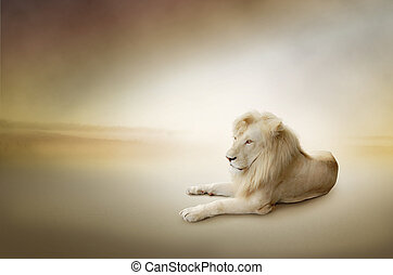Luxury photo of white lion