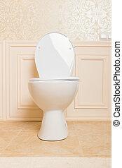 Luxury sanitary equipment in the bathroom.