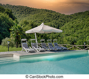 Luxury swimming pool in a garden